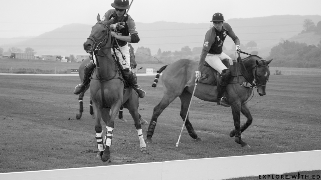 Polo black and white photo