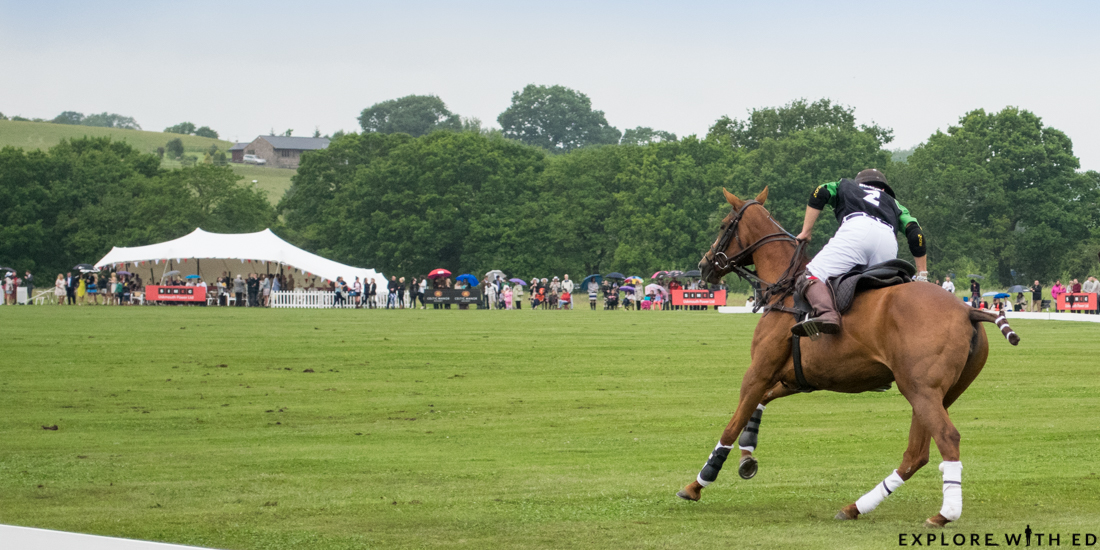 Polo at the Manor game