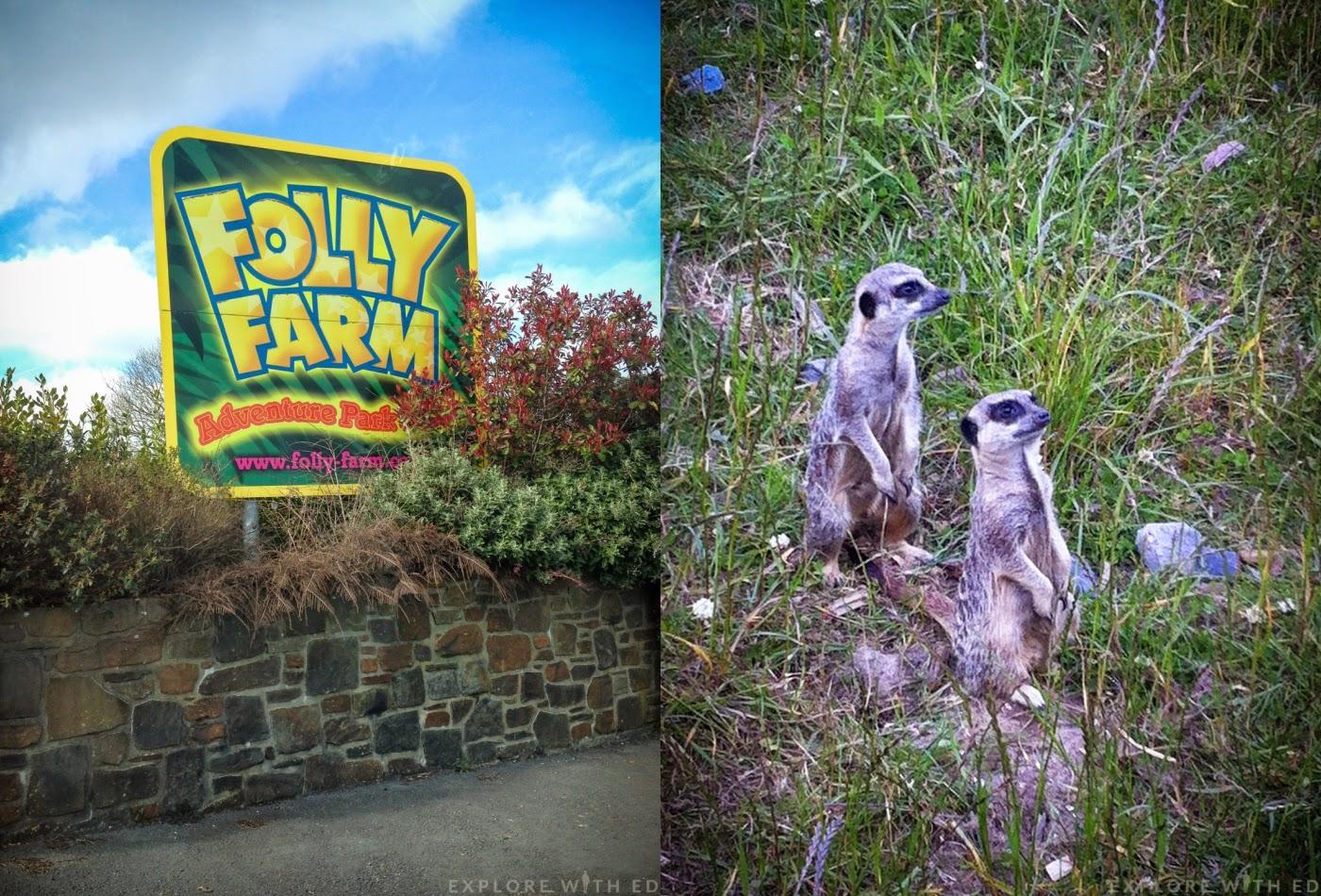 Folly Farm in West Wales