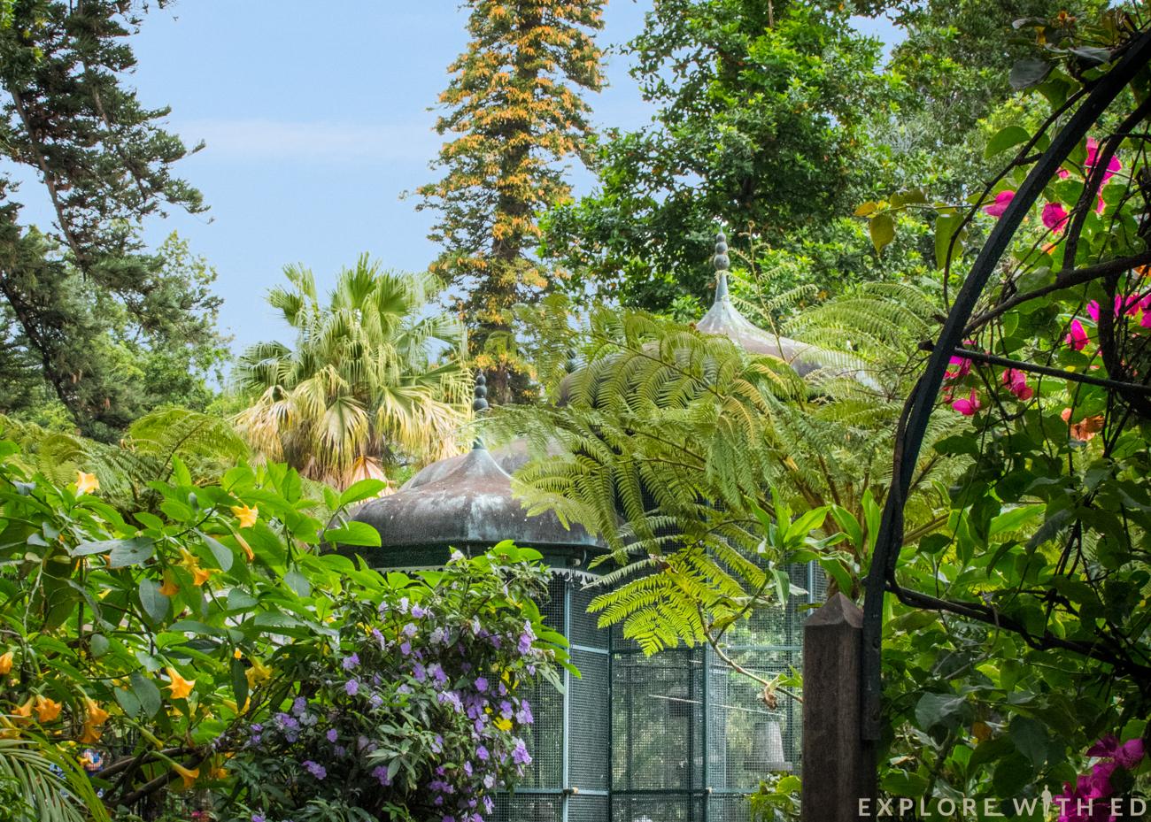 Funchal, Madeira, Botanical Gardens