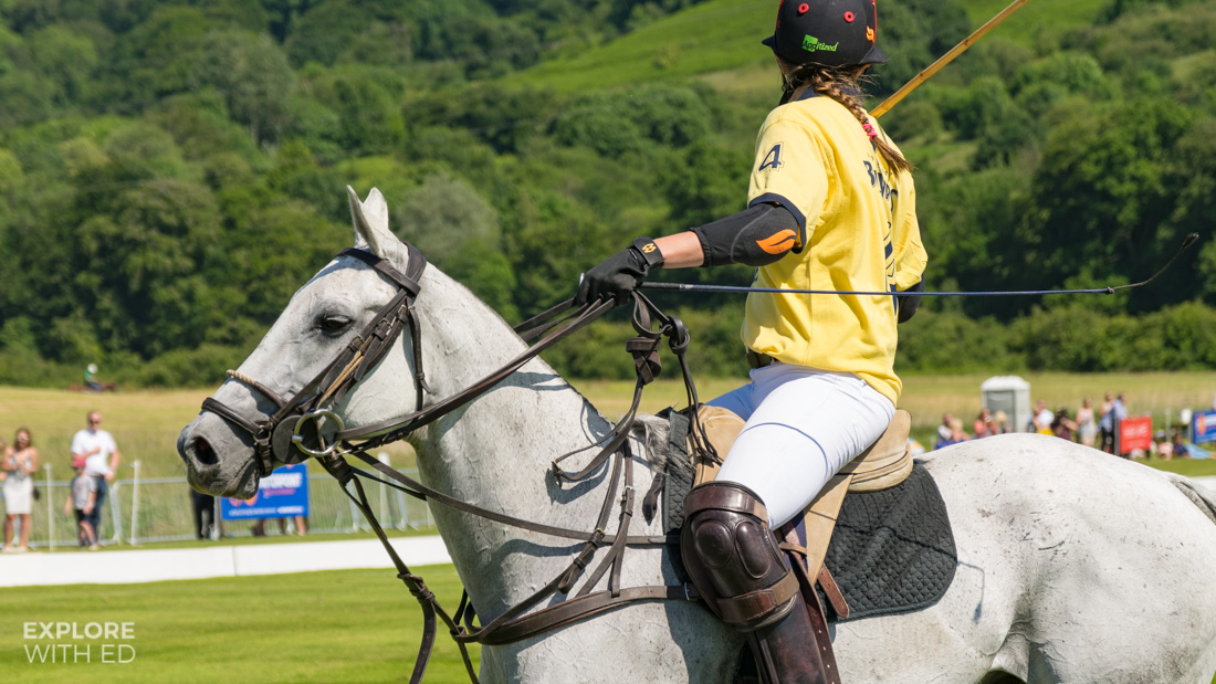 Pony and Polo Player