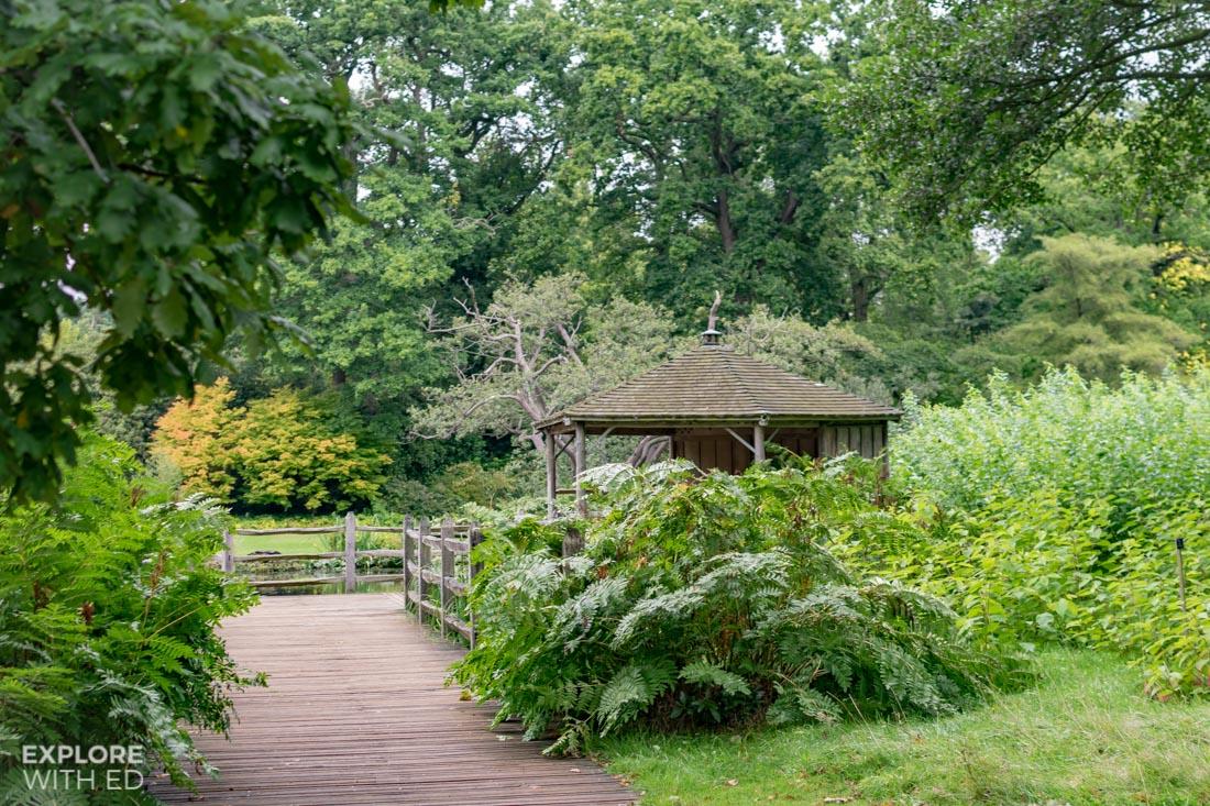 Casson Bridge in The Savill Garden